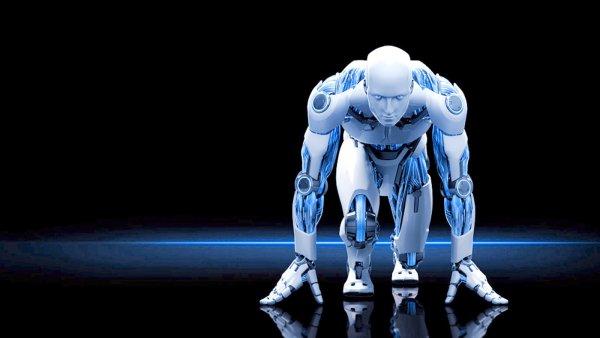 Эксперты прогнозируют заключение браков между людьми и роботами