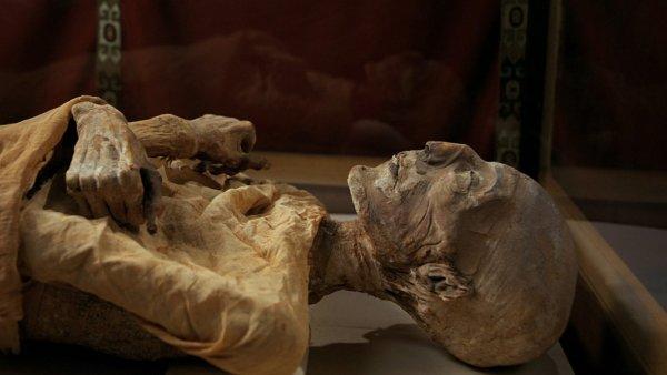 В Киеве нашли древнеегипетские мумии и расписанные саркофаги