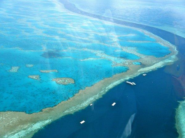 Большой Барьерный риф «воскресал» пять раз за последние 30 тысяч лет
