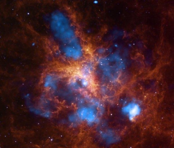 Ученые захватили «морского конька» в самой бурной «звездной колыбели»