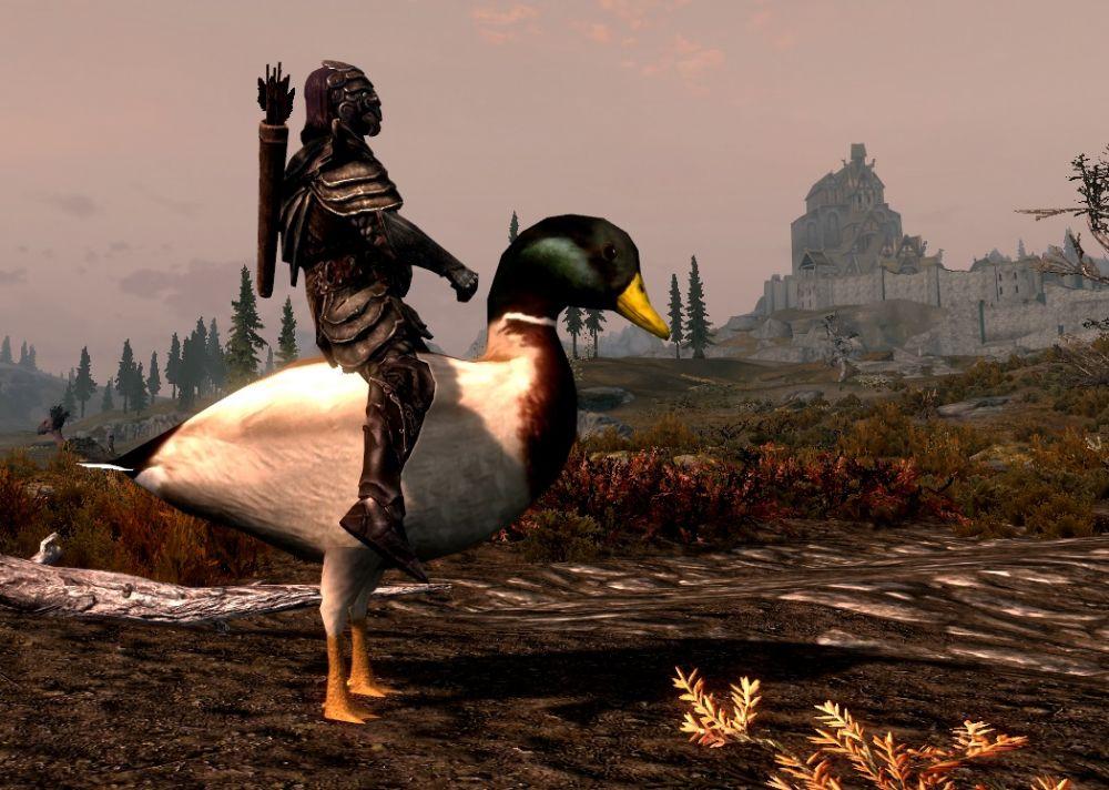 В Skyrim добавили ездовых петухов, уток и фламинго