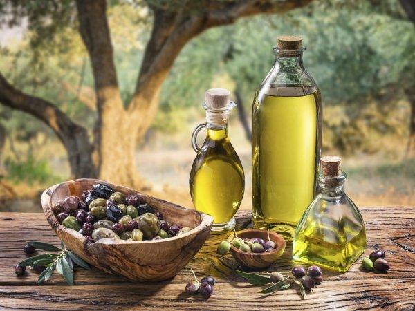 Ученые: В Италии обнаружили самое древнее оливковое масло