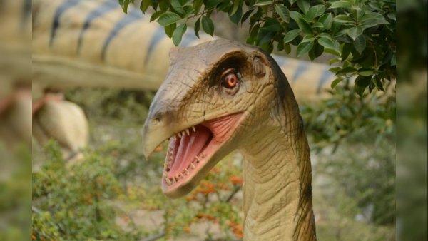 В Никитском ботаническом саду покажут скелет крымского динозавра