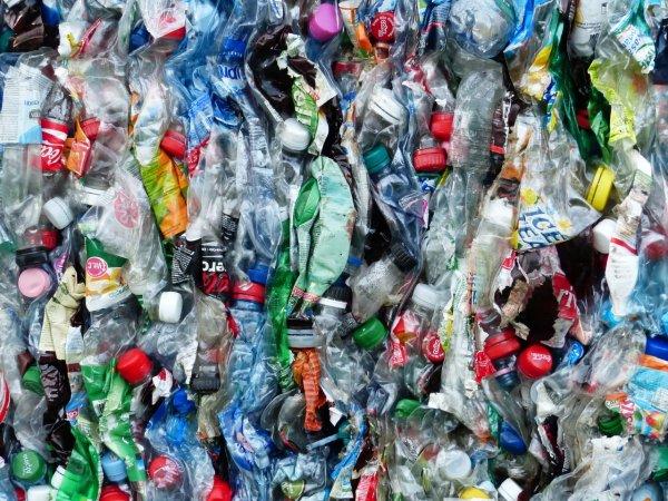 Учёные раскрыли новую опасность пластиковых бутылок
