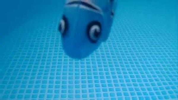 Роборыбы будут уводить живых рыбок от опасности
