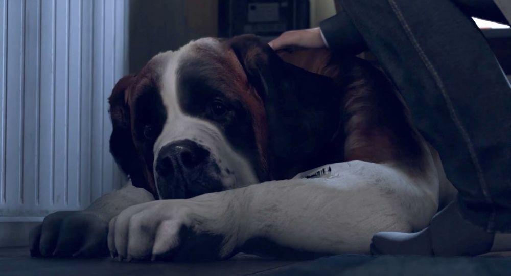 В Detroit: Become Human нашли собаку с человеческими руками