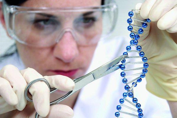 Ученые нашли лекарство против неизлечимого рака