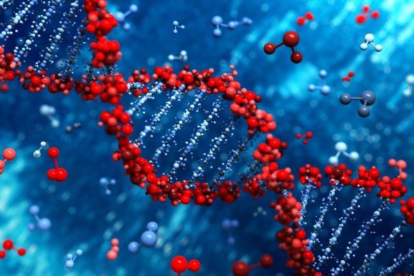 Ученые нашли микробы, препятствующие правильному формированию ДНК