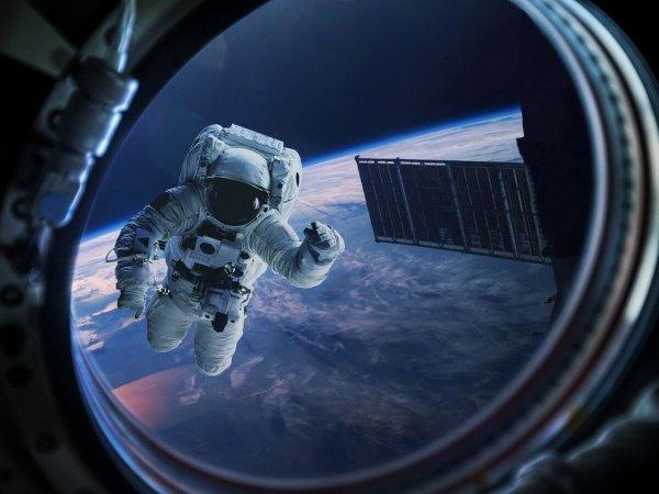 Первый космонавт из ОАЭ отправится на МКС уже в апреле 2019 года