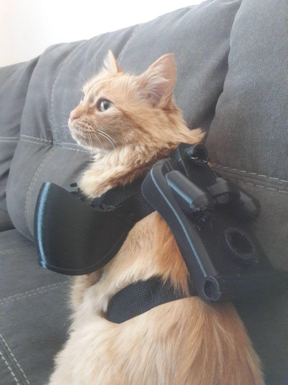 Фанат Fallout создал для своего кота силовую броню