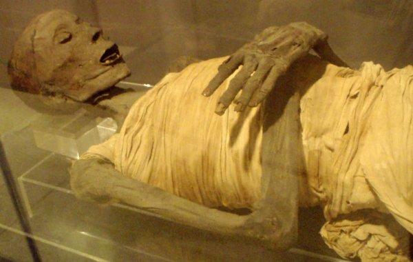Петербургские археологи нашли мумию гуннской красавицы возрастом 2 тыс лет