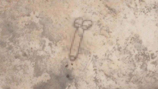 Гигантский пенис нашли в Австралии