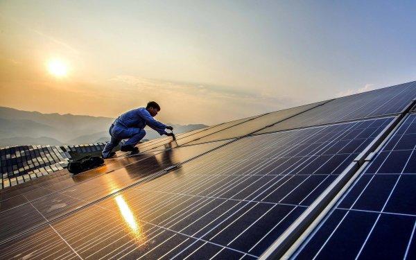 Активисты мешают Илону Маску строить крупнейшее в мире поле под солнечные батареи