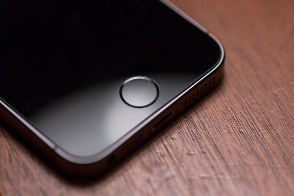 LG подписала с Apple контракт на поставку OLED-экранов для новых iPhone