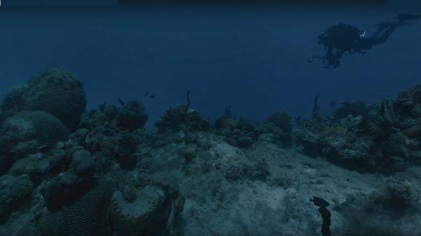 Камера Hydrus VR сняла 8K-видео в кромешной тьме на глубине 300 метров под водой