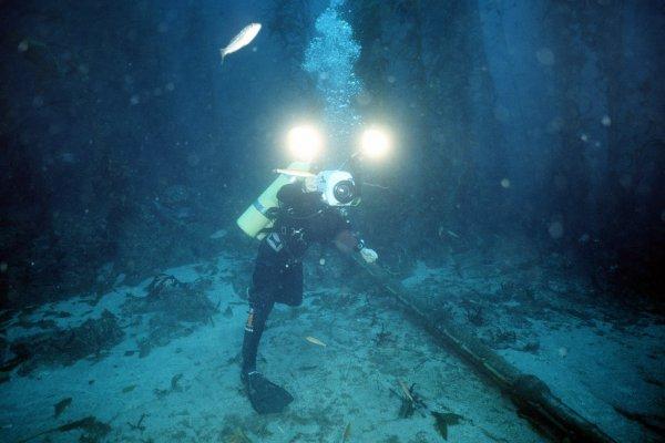 «Они уже здесь»: В Сети появилось видео с рыбой-пришельцем