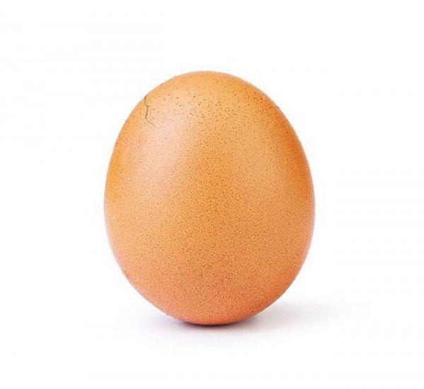 Обогнавшее Кайли Дженнер яйцо по количеству лайков в Instagram треснуло