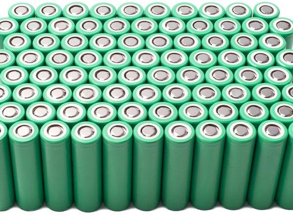 Учёные из России приблизились к созданию «природных» батареек