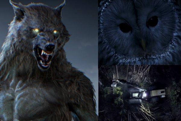 Создатели «Ведьмака» готовят новую игру про оборотня Werewolf: The Apocalypse – Heart of the Forest